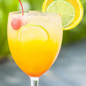 Zesty Punch Sipper SmoothieRecipe