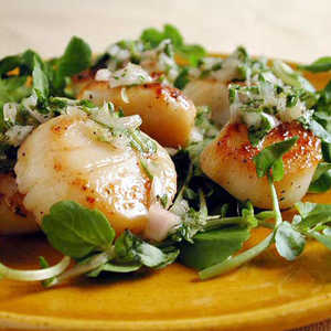 Seared Scallops with Parsley-Thyme RelishRecipe