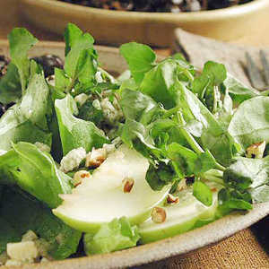Watercress-Bibb Salad with Apples and Blue CheeseRecipe