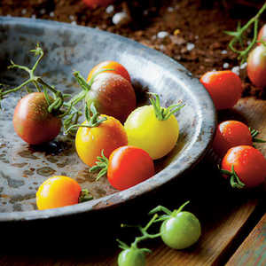 Roasted Cherry TomatoesRecipe