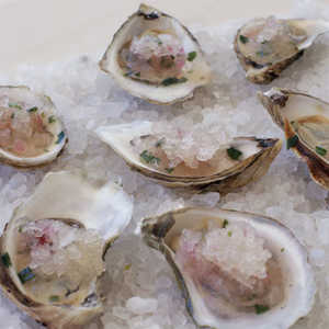Oysters on the Half-Shell with Grapefruit Granita Recipe