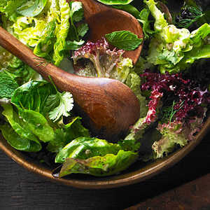 Little Lettuces with Herbs Recipe