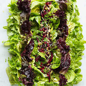 Baby Lettuces with BeetsRecipe