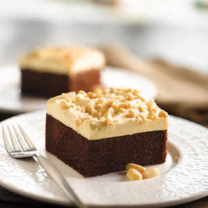 Peanut Butter Topped Chocolate CakeRecipe
