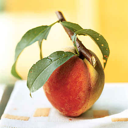A Passion for Peaches