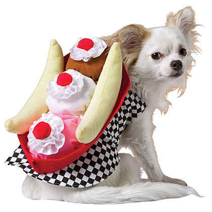 Banana Split Dog Costume