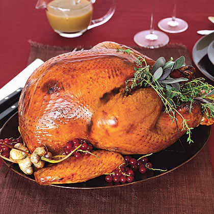 Turkey, Fast and Easy