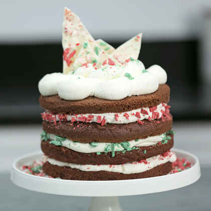 Easy Chocolate Christmas Cake