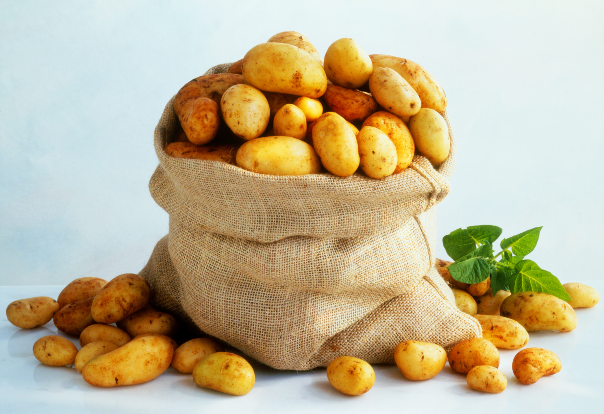Great News, Just in Time for the Holidays: Potatoes Are Actually Healthy