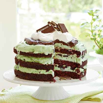 #3: Mint Chocolate Chip Ice-Cream Cake