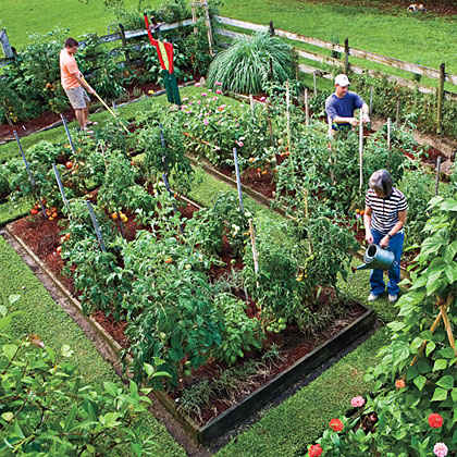 Planting a vegetable garden a monthly guide myrecipes for Vegetable patch ideas