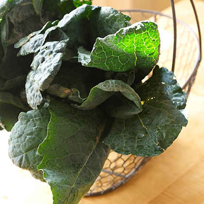 Superfood: Kale