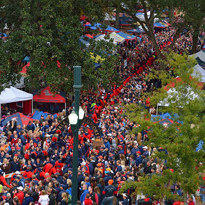 University of Mississippi - The Grove