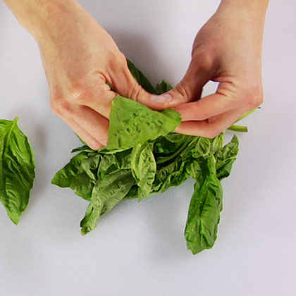 Slicing Basil