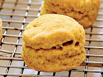pumpkin-biscuits-ck-1853975-x.jpg