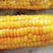 Corn on the Cob with Lemon Curry Spice Butter Recipe