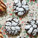 Chocolate-Peppermint Crackle Cookies Recipe