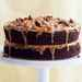 Double-Caramel Turtle Cake Recipe
